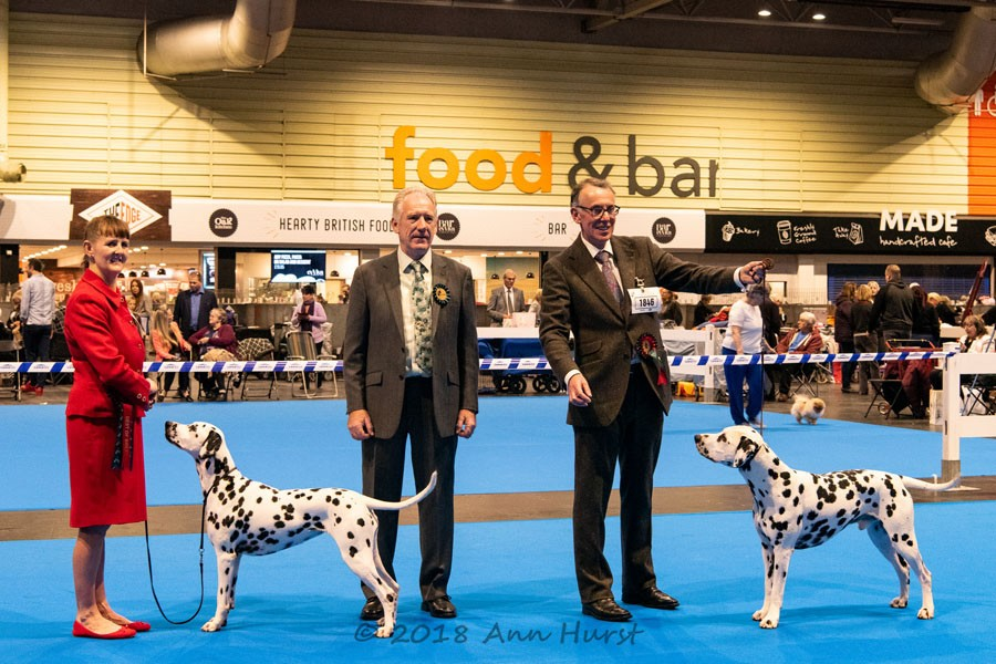Best of Breed, Tamilanda Pick-A-Lilly, Mr K & Mrs D L Whincup